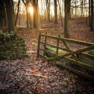 Warwickshire 001 Chris Fossey